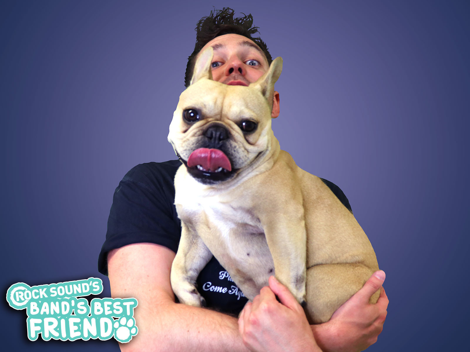 Band's Best Friend: Josh Franceschi And Harley - Features