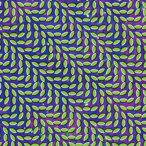 Animal Collective - Merriweather Post Pavilion Cover