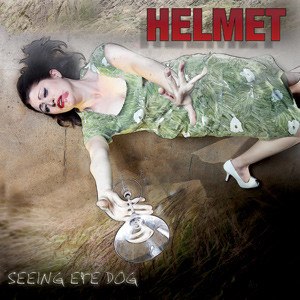 Helmet - Seeing Eye Dog Cover