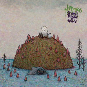 J Mascis - Several Shades Of Why Cover