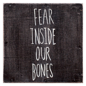 The Almost - Fear Inside Our Bones Cover
