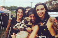 A Bunch Of Bands Hung Out With Doug The Pug Yesterday