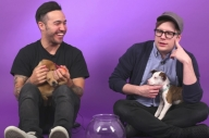 This Video Of Fall Out Boy Answering Questions Whilst Holding Puppies Is Everything